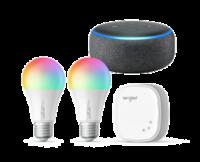 An Amazon Echo smart speaker, smart bulbs and a smart plug